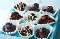 Chocolate Blueberry Bites
