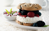 Ice Cream Berry Sandwich