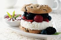 Ice Cream Berry Sandwich