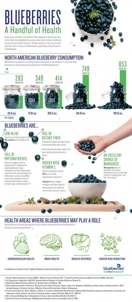 blueberry-council-infographic-a-handful-of-health1-600x1366