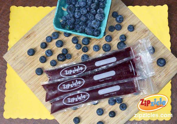 zipzicle_chia_blueberry-horizontal-600w