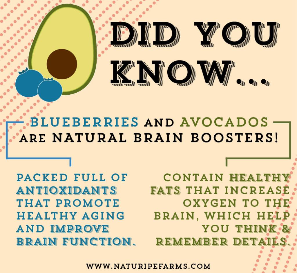 Brain Power Smoothies 101 + Pinterest Sweepstakes