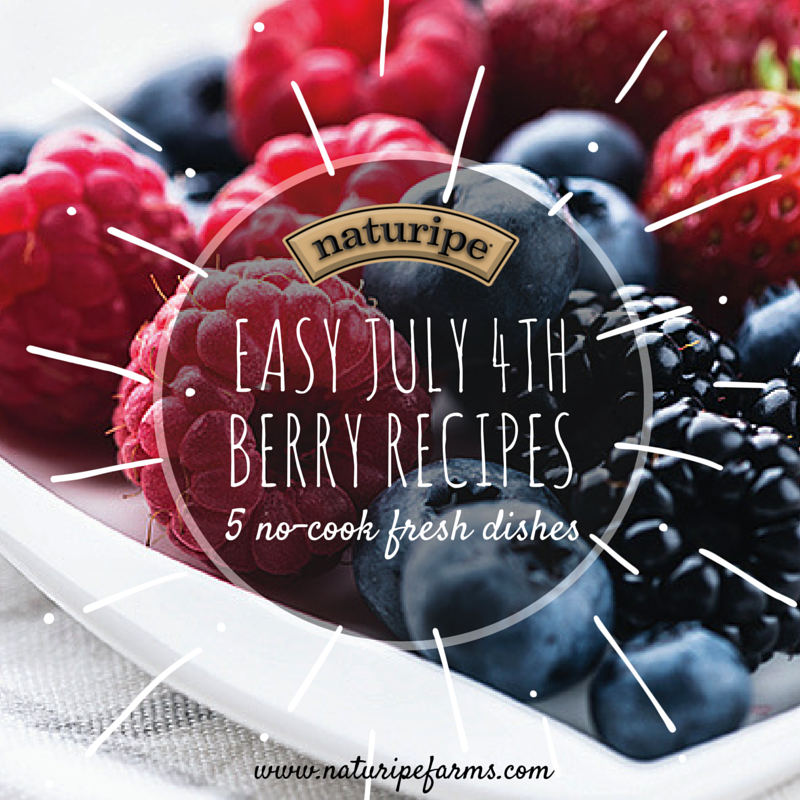 Easy July 4th Berry Recipes!