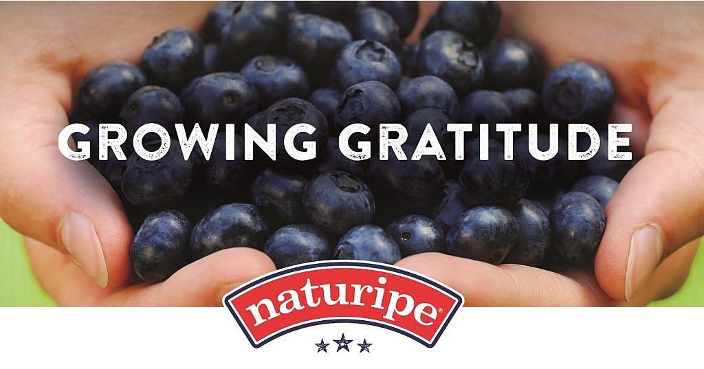 Growing Gratitude: Township of Hamilton, NJ, Police Department